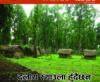 Bhumi Adhikar Bulletin 33