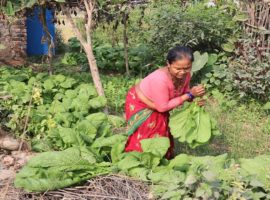 Empowering Rural Producers in Commercial Agriculture (EPIC)