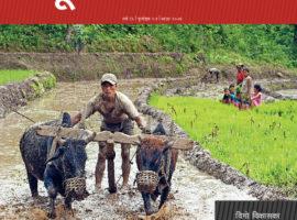 Bhumi Adhikar Bulletin 53