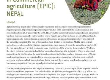 Empowering Rural Producers in Commercial agriculture (EPIC): NEPAL