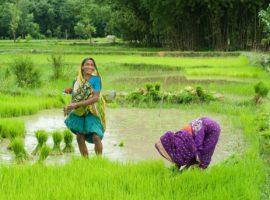 Community Land Protection Initiative (CLPI)