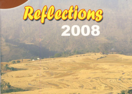 Reflection 2008